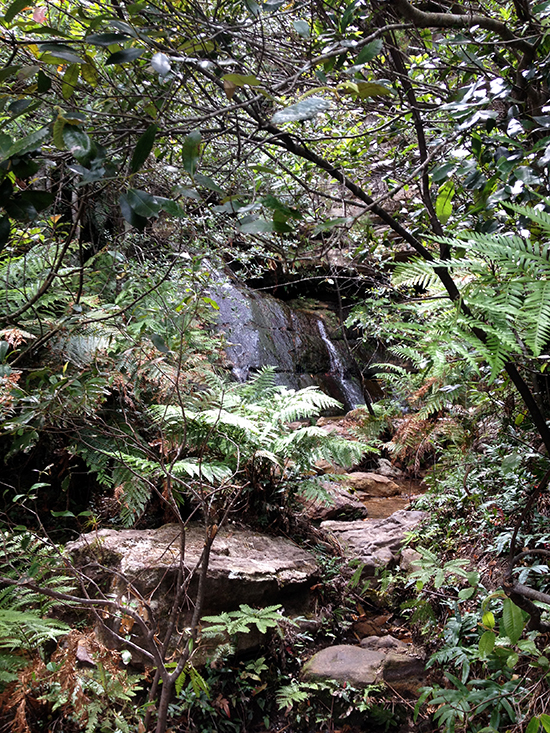 Nature Track, hidden waterfall
