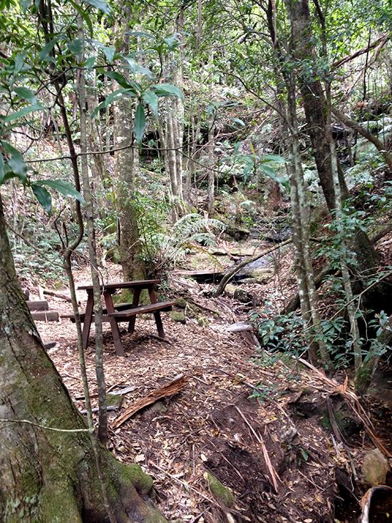 Nature Track, picnic spot