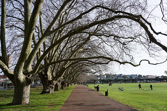 Auckland Victoria Park
