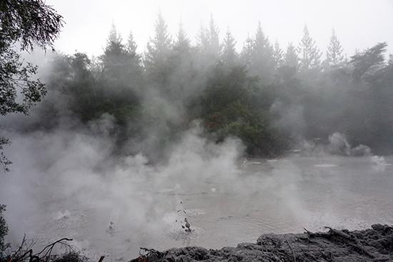 Rotorua Mud Pool