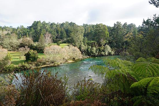 2014 New Zealand (2301)