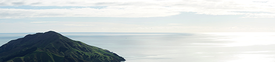 2014 New Zealand (2564)