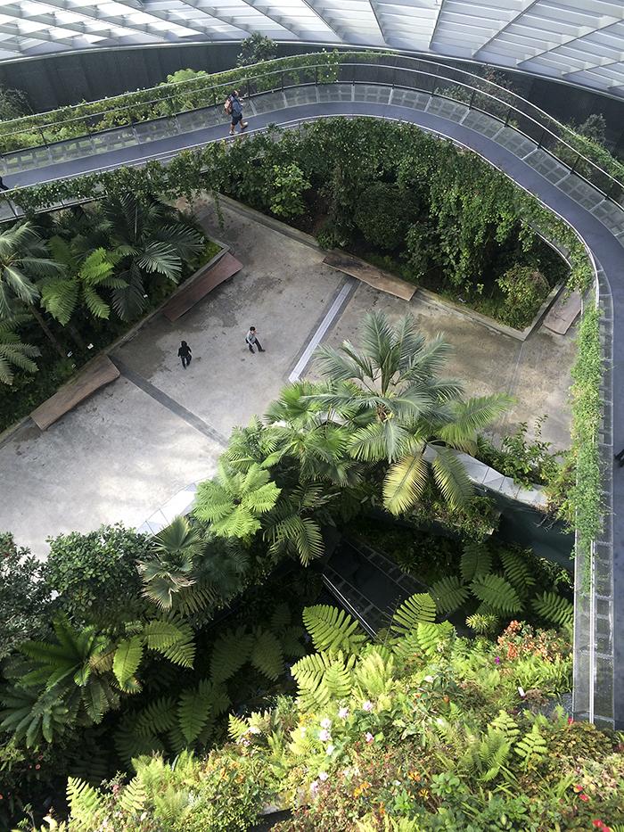 2015-01-31 Singapore (44)