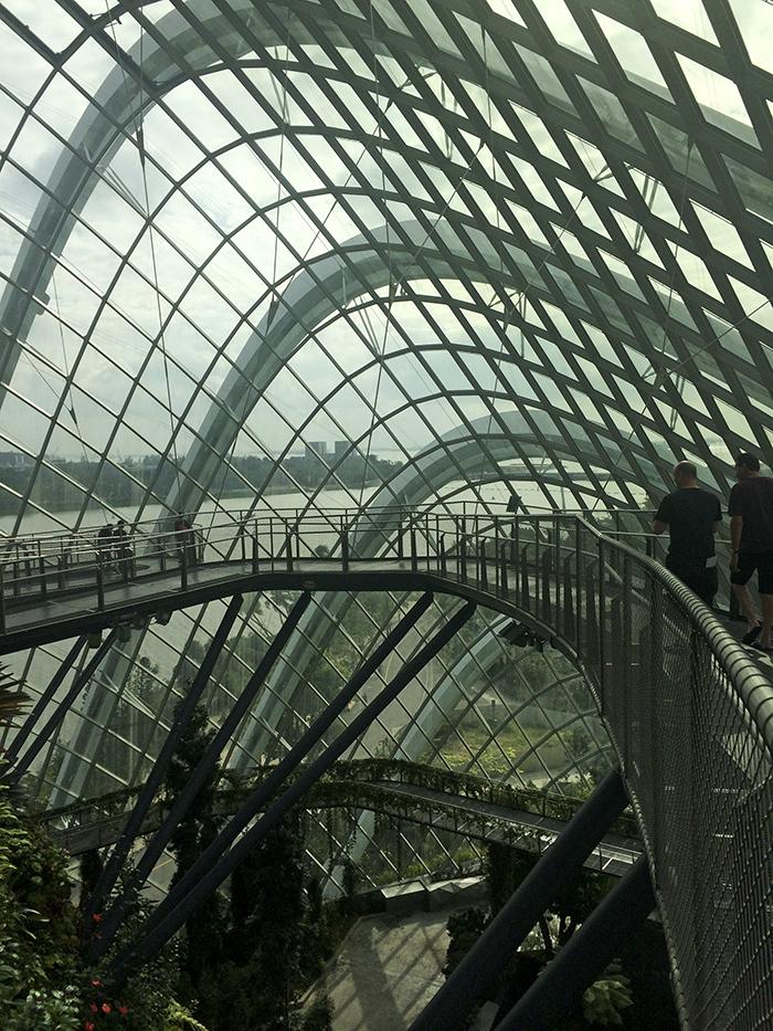 2015-01-31 Singapore (45)