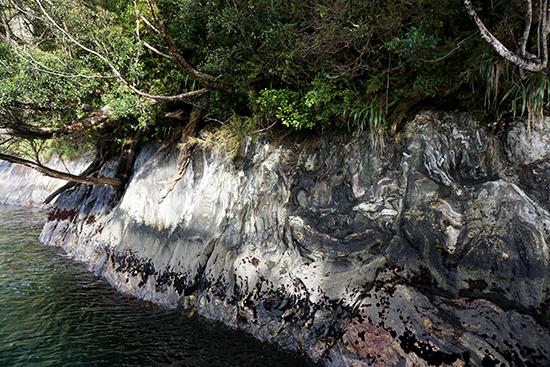 Fiordland - alongtheaway.com