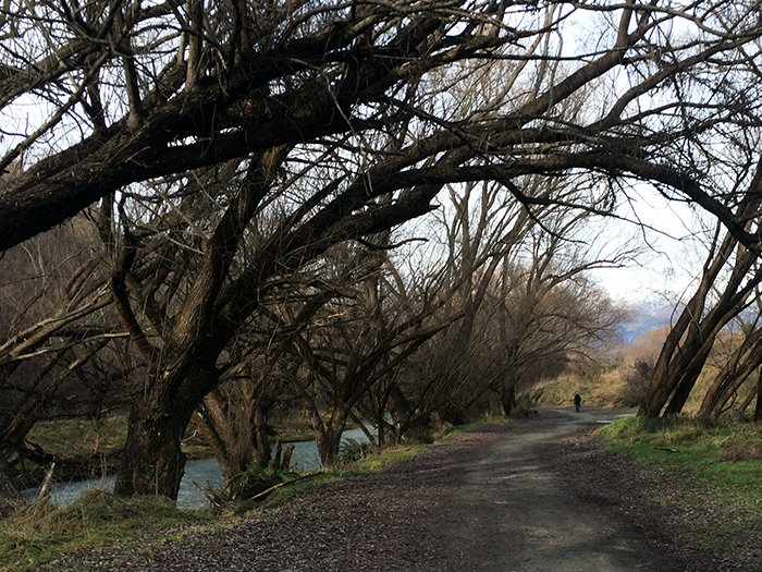Arrowtown Adventures - alongtheaway.com