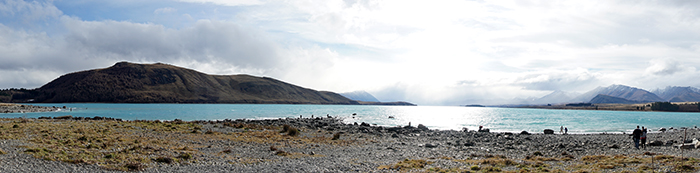 2014 New Zealand (3389)