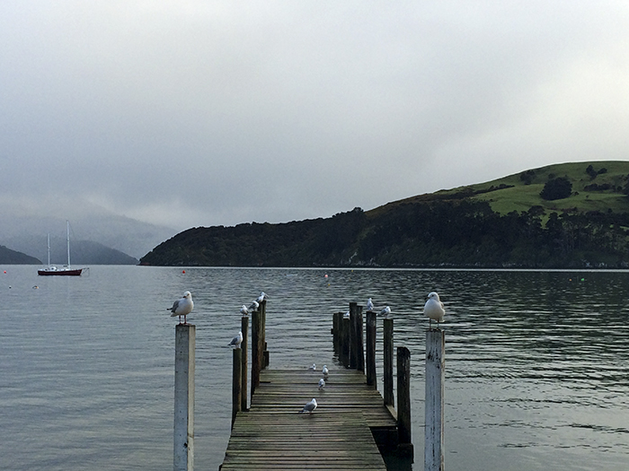 Akaroa - Along the Away