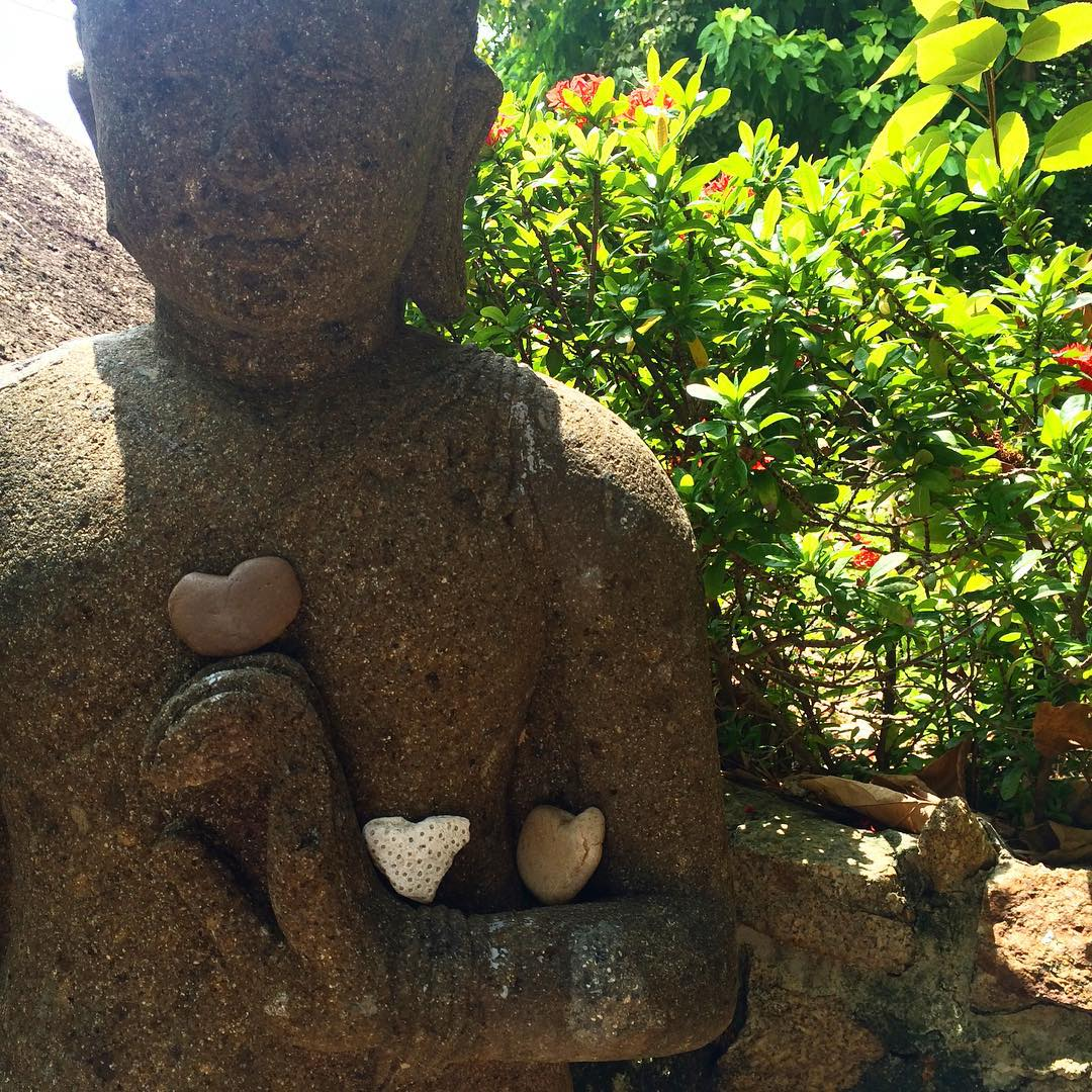 Heart Buddha Vikasa Yoga Retreat