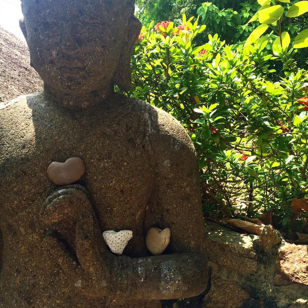 Heart Buddha Vikasa Yoga Retreat