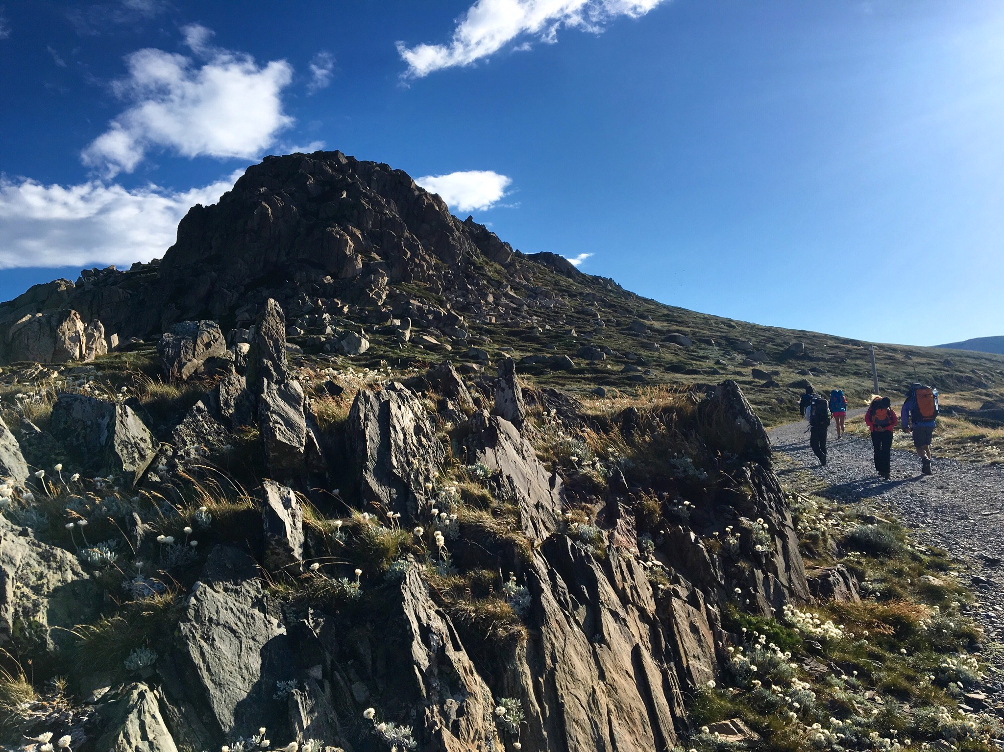 Mt Kosciuszko Hike